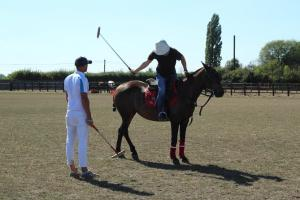 Horse & Polo Half Day In Windsor UK