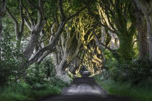 Game Of Thrones Tour - Belfast Winterfell Trek (via) Packages